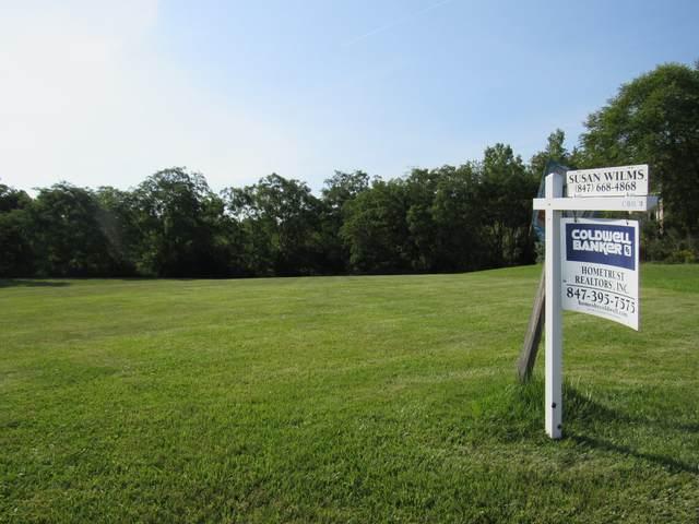 553 Birch Hollow Drive, Antioch, IL 60002 (MLS #10814292) :: John Lyons Real Estate