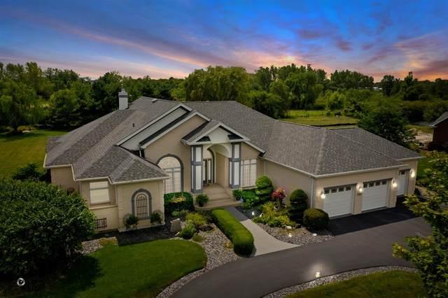 7247 W James Lane, Monee, IL 60449 (MLS #10821417) :: John Lyons Real Estate