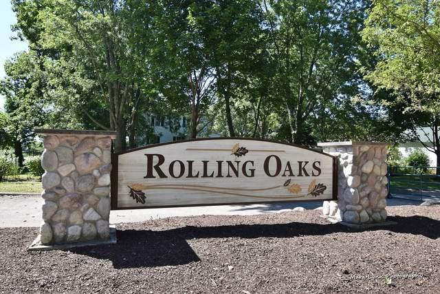 260 Rolling Oaks Drive, Burlington, IL 60109 (MLS #10824930) :: John Lyons Real Estate