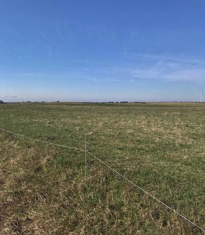 Lot 154 N 1700E Road, Cabery, IL 60919 (MLS #10841333) :: The Wexler Group at Keller Williams Preferred Realty