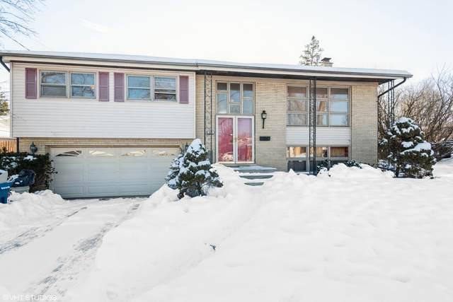 311 W Myrick Avenue, Addison, IL 60101 (MLS #10854626) :: Jacqui Miller Homes