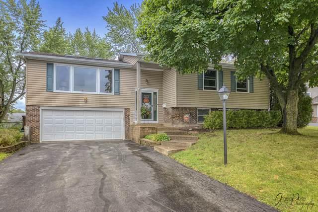525 Ramblewood Court, Lake Zurich, IL 60047 (MLS #10855963) :: John Lyons Real Estate