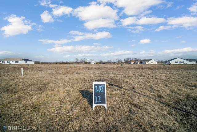 1404 Indian Trail, Kankakee, IL 60901 (MLS #10856627) :: RE/MAX IMPACT