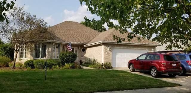1224 Arbor Drive, Lemont, IL 60439 (MLS #10858956) :: The Dena Furlow Team - Keller Williams Realty