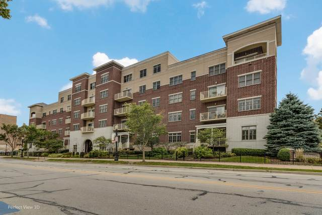 965 Rogers Street #203, Downers Grove, IL 60515 (MLS #10889510) :: The Wexler Group at Keller Williams Preferred Realty