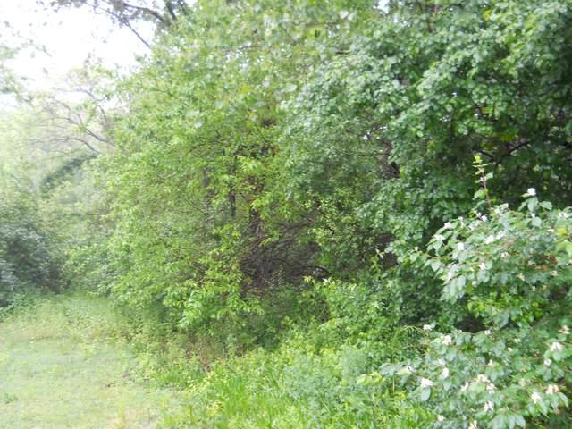 11 Oakwood Estates, Oglesby, IL 61348 (MLS #10896458) :: Ryan Dallas Real Estate
