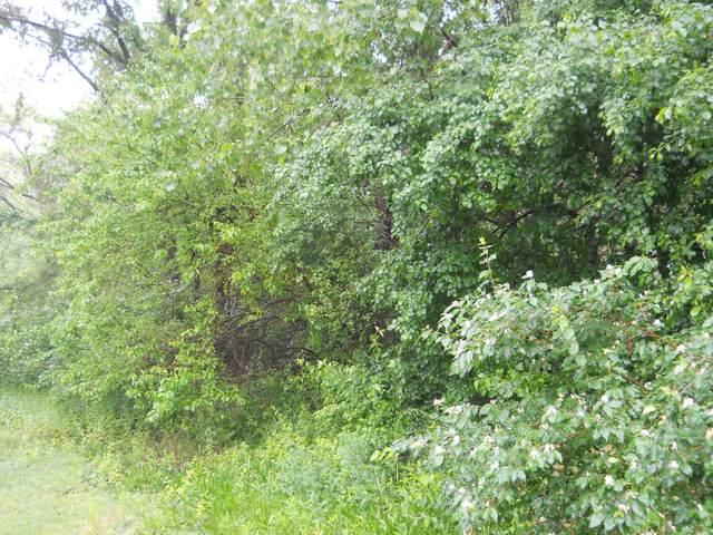 13 Oakwood Estates, Oglesby, IL 61348 (MLS #10896506) :: Ryan Dallas Real Estate