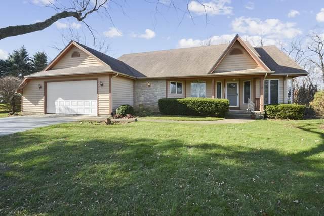 6803 W Applewood Lane, Spring Grove, IL 60081 (MLS #10903680) :: Janet Jurich