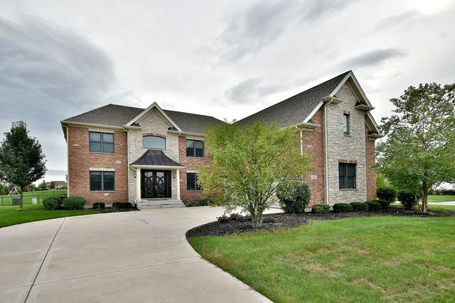 4212 Winterberry Avenue, Naperville, IL 60564 (MLS #10904760) :: Schoon Family Group