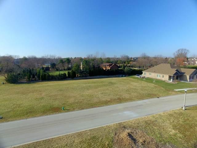 1040 Tadeusz Way, Lemont, IL 60439 (MLS #10905589) :: Littlefield Group