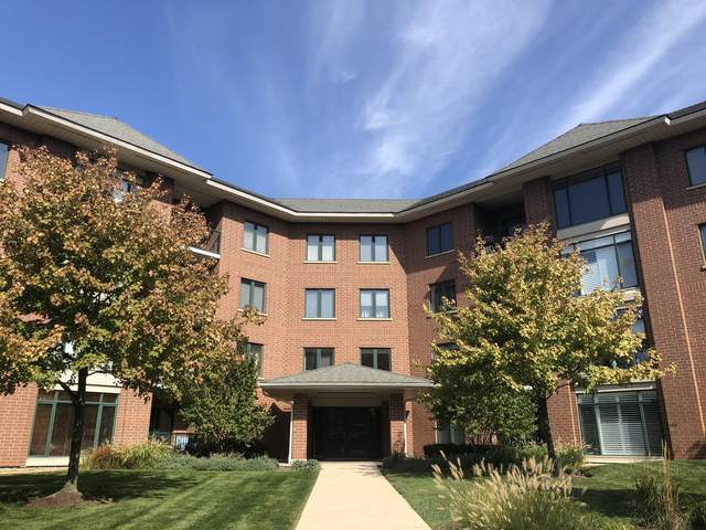 875 E 22nd Street #402, Lombard, IL 60148 (MLS #10908514) :: Helen Oliveri Real Estate
