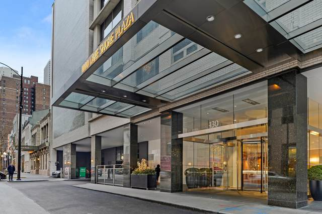 1000 N Lake Shore Plaza 20C, Chicago, IL 60611 (MLS #10917817) :: The Wexler Group at Keller Williams Preferred Realty