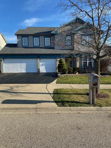3083 N Augusta Drive, Wadsworth, IL 60083 (MLS #10918075) :: Schoon Family Group