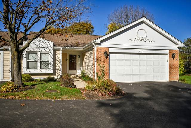 1015 Creekside Drive, Wheaton, IL 60189 (MLS #10918121) :: The Wexler Group at Keller Williams Preferred Realty