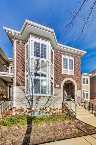 1446 E Northwest Highway, Arlington Heights, IL 60004 (MLS #10918339) :: Property Consultants Realty