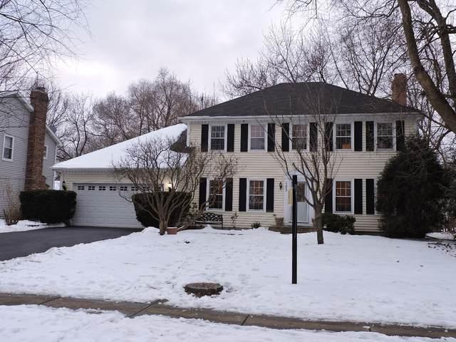 1217 Bainbridge Drive, Naperville, IL 60563 (MLS #10919868) :: Jacqui Miller Homes