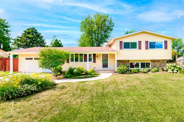 965 Camelot Drive, Crystal Lake, IL 60014 (MLS #10920438) :: Property Consultants Realty