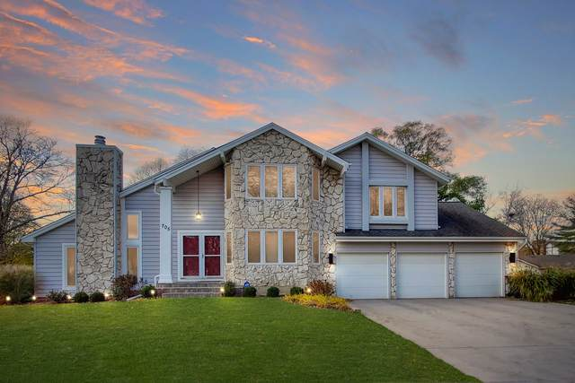 705 S River Road, Naperville, IL 60540 (MLS #10920733) :: Littlefield Group