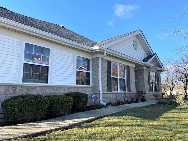 21550 Papoose Lake Court, Crest Hill, IL 60403 (MLS #10923650) :: Schoon Family Group