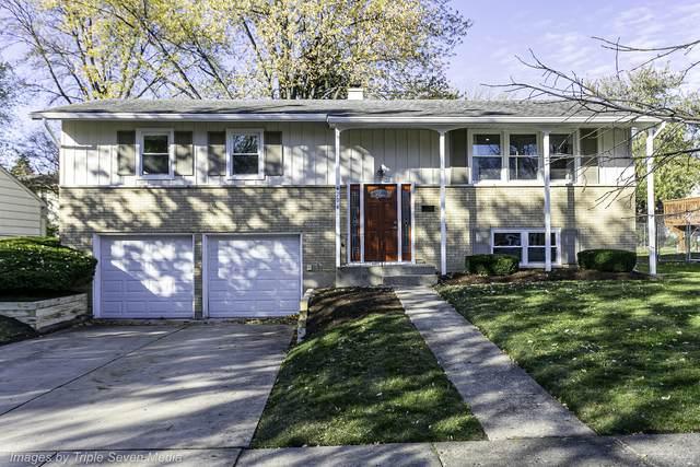 204 N Dean Drive, Palatine, IL 60074 (MLS #10923868) :: BN Homes Group