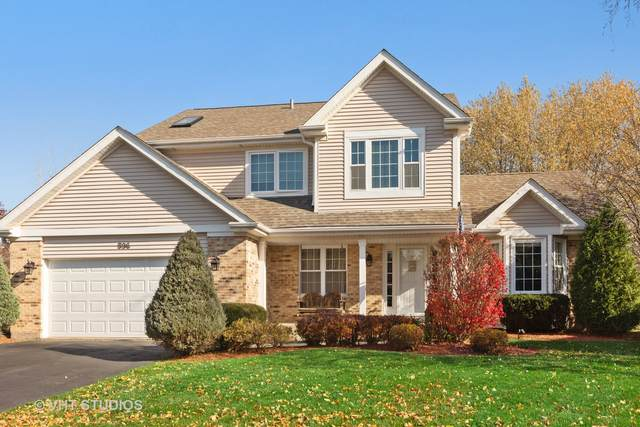 596 S Country Ridge Court, Lake Zurich, IL 60047 (MLS #10927843) :: Suburban Life Realty