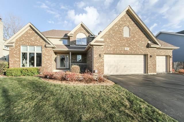 515 Grant Street, Roselle, IL 60172 (MLS #10930123) :: Suburban Life Realty