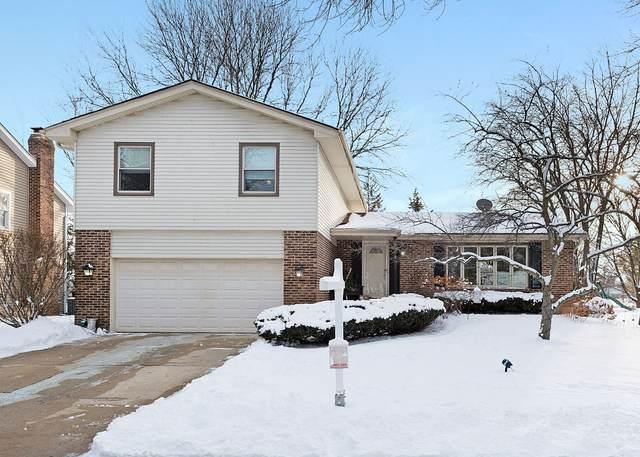 909 Stonehenge Court, Naperville, IL 60563 (MLS #10934602) :: Jacqui Miller Homes