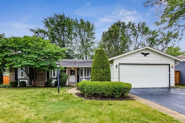 273 W Brantwood Avenue, Elk Grove Village, IL 60007 (MLS #10935094) :: BN Homes Group
