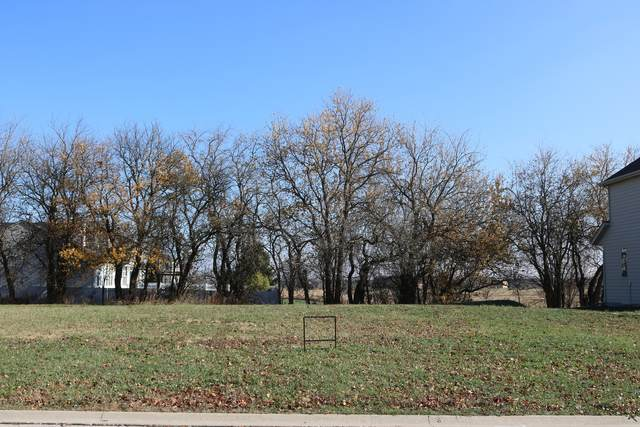 11637 Millennium Parkway, Plainfield, IL 60585 (MLS #10935105) :: The Spaniak Team