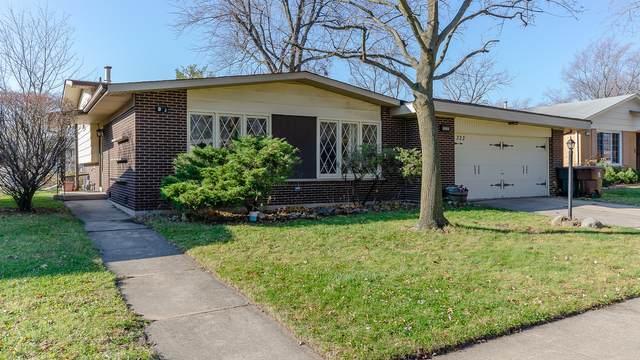 322 N Illinois Avenue, Glenwood, IL 60425 (MLS #10935261) :: Lewke Partners