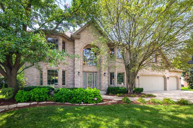 3555 Tralee Court, Naperville, IL 60564 (MLS #10935643) :: Littlefield Group