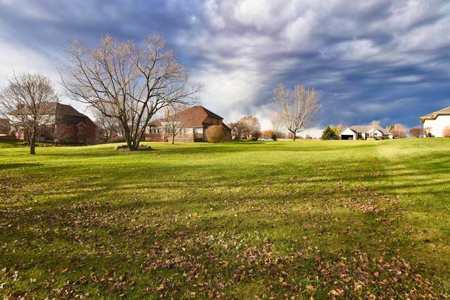 3365 W Nettle Creek Drive, Morris, IL 60450 (MLS #10935862) :: Ani Real Estate