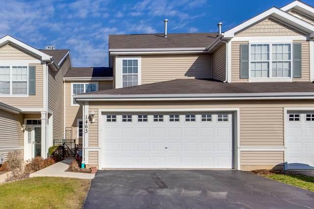 1463 W Remington Lane, Round Lake, IL 60073 (MLS #10935908) :: Helen Oliveri Real Estate