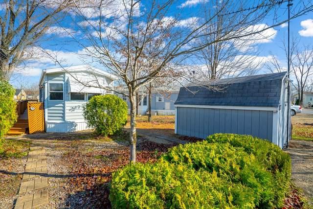 80 Dinosaur Road, Wilmington, IL 60481 (MLS #10936188) :: John Lyons Real Estate