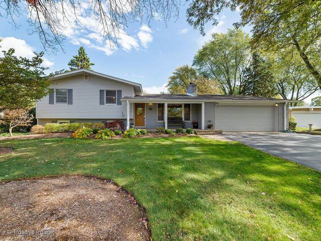 873 N Martin Drive, Palatine, IL 60067 (MLS #10936283) :: Littlefield Group
