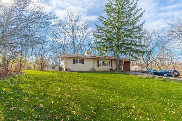 14635 W Walnut Avenue, Homer Glen, IL 60491 (MLS #10936362) :: BN Homes Group