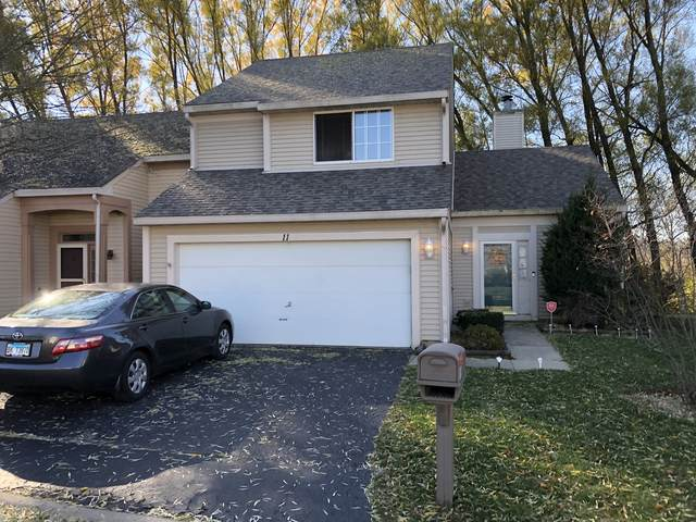 11 Larkspur Court, Lake In The Hills, IL 60156 (MLS #10936381) :: Suburban Life Realty