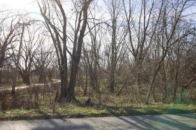 0000 Elmwood Avenue, Wilmington, IL 60481 (MLS #10936394) :: John Lyons Real Estate