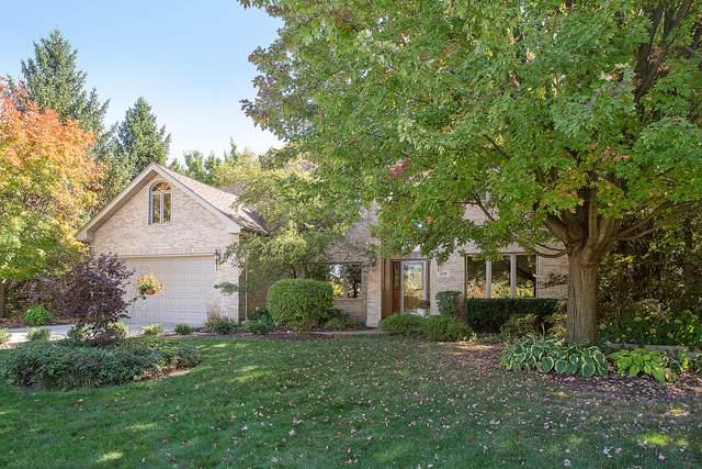 1208 Pleasant Place, Lemont, IL 60439 (MLS #10936500) :: Helen Oliveri Real Estate