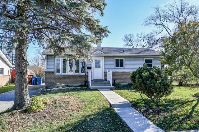 437 W Natalie Lane, Addison, IL 60101 (MLS #10936701) :: Helen Oliveri Real Estate