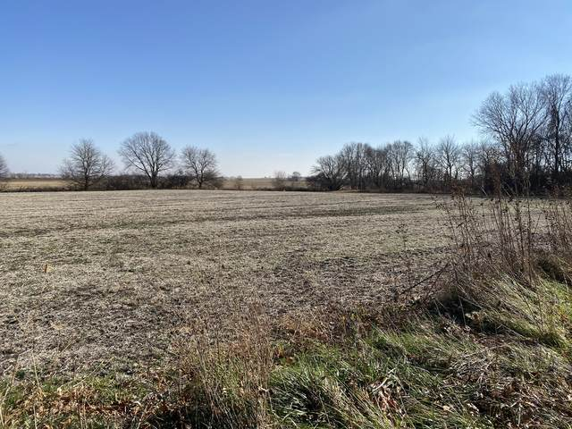 000 Resource Lane, Genoa, IL 60135 (MLS #10936731) :: The Wexler Group at Keller Williams Preferred Realty