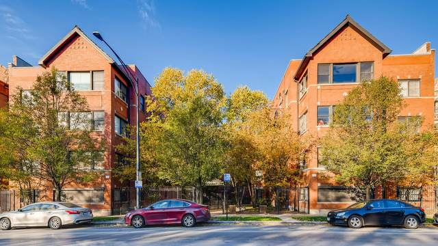 5936 S King Drive #1, Chicago, IL 60637 (MLS #10936820) :: Lewke Partners