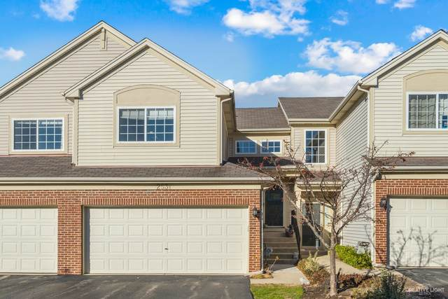 253 Nicole Drive B, South Elgin, IL 60177 (MLS #10937046) :: Helen Oliveri Real Estate