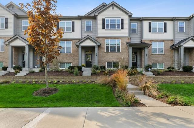 16 E Heritage Court, Arlington Heights, IL 60004 (MLS #10937138) :: Helen Oliveri Real Estate