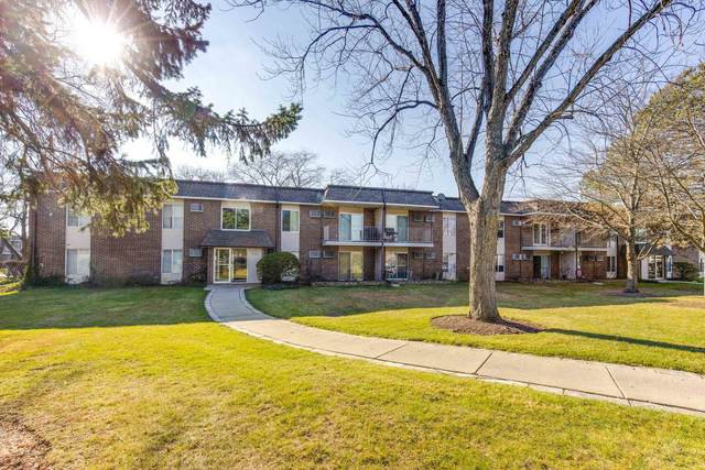 1089 Miller Lane #207, Buffalo Grove, IL 60089 (MLS #10937237) :: Helen Oliveri Real Estate