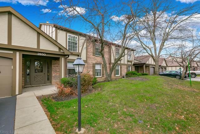 2850 Northampton Drive B2, Rolling Meadows, IL 60008 (MLS #10937282) :: Littlefield Group