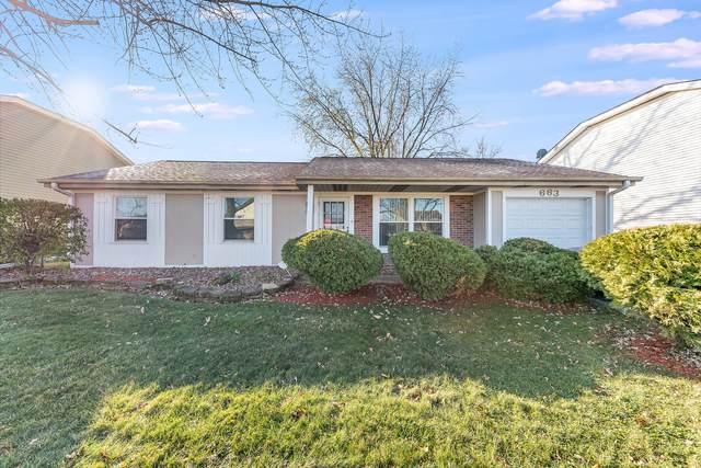 663 Chesapeake Drive, Bolingbrook, IL 60440 (MLS #10937303) :: The Dena Furlow Team - Keller Williams Realty