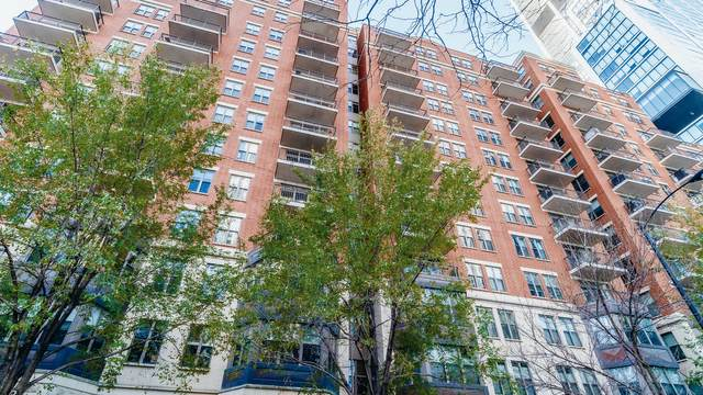 1250 S Indiana Avenue #309, Chicago, IL 60605 (MLS #10937418) :: O'Neil Property Group