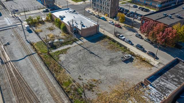 9135 S Baltimore Avenue, Chicago, IL 60617 (MLS #10937582) :: Lewke Partners