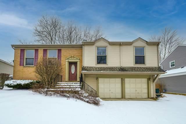 20 Montgomery Lane, Vernon Hills, IL 60061 (MLS #10937710) :: Schoon Family Group